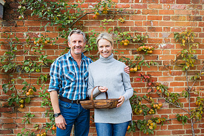 Portrait smiling mature couple harvesting apples in garden - p1023m2010376 by Sam Edwards