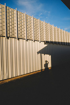 Sunlight falling on corrugated iron against sky - p1166m1555203 by Cavan Images