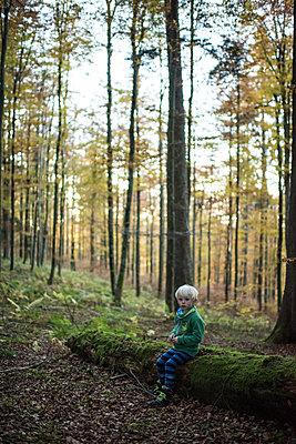 Eine kleiner Junge sitzt auf einem Baumstamm - p1354m1362638 von Kaiser