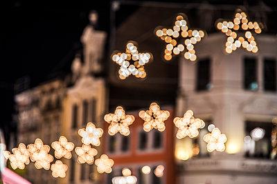 Leuchtende Weihnachtssterne - p401m2004916 von Frank Baquet