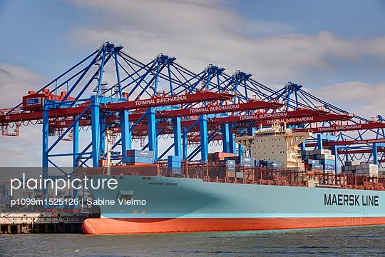 Containerterminal Hamburg - p1099m1525126 von Sabine Vielmo