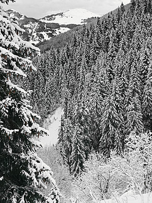 Snow in the mountains - p1048m2016621 by Mark Wagner