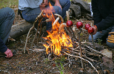 Campfire - p3170015 by Nina Steul