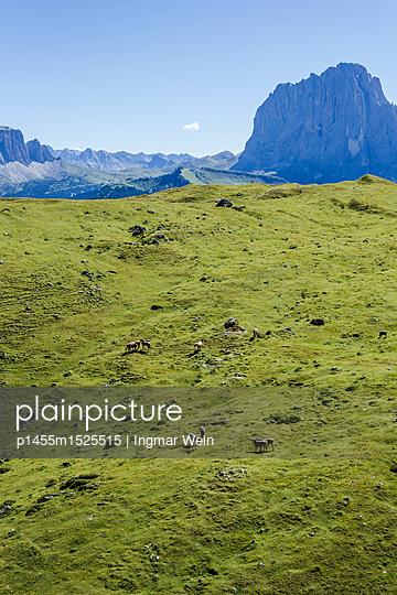 Bergregion Secada in Südtirol, Italien - p1455m1525515 von Ingmar Wein