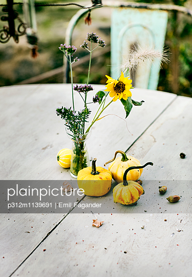 Yellow pumpkin sand flowers in vase
