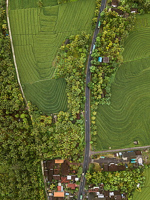 A hamlet, fields and trees, aerial view - p1108m2141984 by trubavin