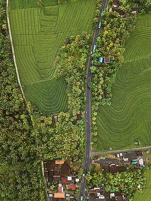 Eine Ortschaft, Felder und Bäume, Luftaufnahme - p1108m2141984 von trubavin