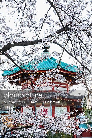 Japan, Honshu, Tokyo, Ueno, Ueno Park, Shinobazu Pond, Bentendo Temple - p651m2271083 by Travel Pix Collection
