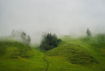 Mist over rolling landscape, Salzburg, Austria - p429m824487 by Mischa Keijser