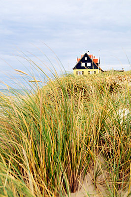 Dänemark - p7150078 von Marina Biederbick