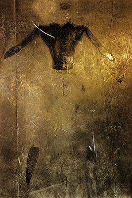 Sweat Drawings - p1636m2216368 by Raina Anderson