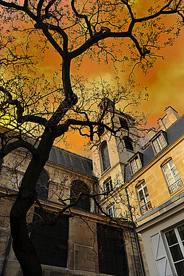 Stucco - p6010062 by Alain Caste