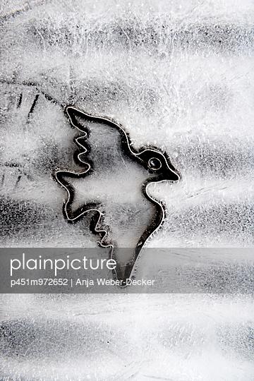 Icy bird - p451m972652 by Anja Weber-Decker