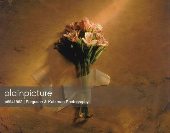 p6941962 von Ferguson & Katzman Photography