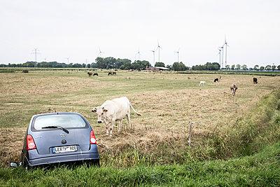 Unfall in Ostfriesland - p1222m2054044 von Jérome Gerull