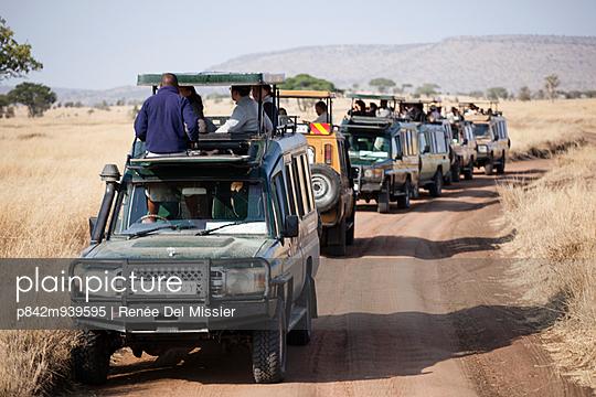 Safari - p842m939595 by Renée Del Missier
