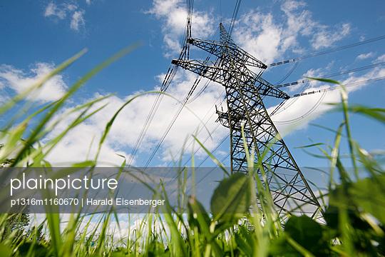 Strommast in einer Wiese, Gleisdorf, Steiermark, Österreich - p1316m1160670 von Harald Eisenberger