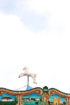 Springendes Pferd - p6370109 von Florian Stern