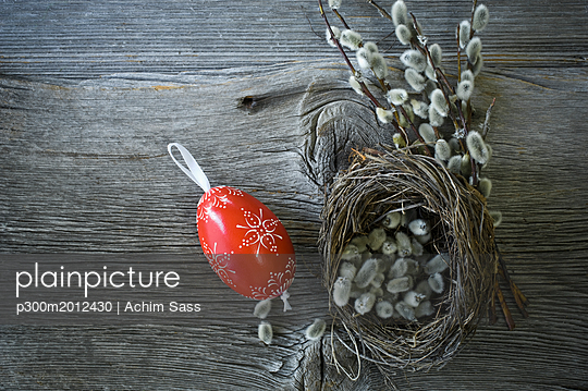 Hand-painted Easter egg, Pussy Willow twigs and Easter nest on wood