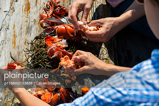 Eating fresh cooked lobster on the rocks outside - p1166m2153838 by Cavan Images