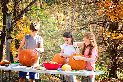 Three Young Children Carving Pumpkins Outdoors - p1166m2147167 by Cavan Images