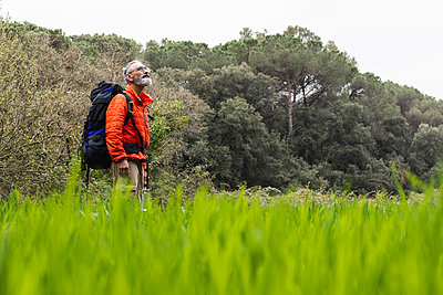 Senior man looking up while standing in grass - p300m2277364 by NOVELLIMAGE