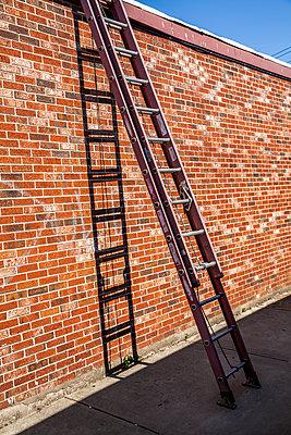 Ausziehbare Leiter lehnt an einer Backsteinmauer - p397m1573941 von Peter Glass