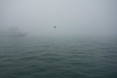 Passenger ship in the fog - p335m1111411 by Andreas Körner