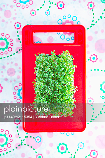 Cress on chopping board - p1149m2115354 by Yvonne Röder