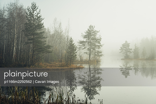 Small beautiful lake at foggy autumn day in the park. - p1166m2292562 by Cavan Images