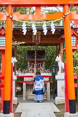 Japanese traditional Shichi-Go-San - p307m2023337 by Yosuke Tanaka