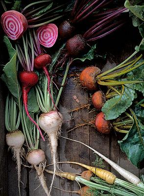 Vegetable harvest - p972m1136678 by Gerry Johansson