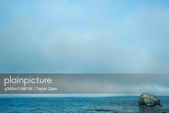 p343m1168136 von Taylor Zann