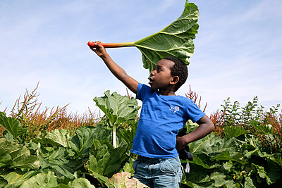 Boy playing with a giant leaf - p1307m1585029 by Agnès Deschamps