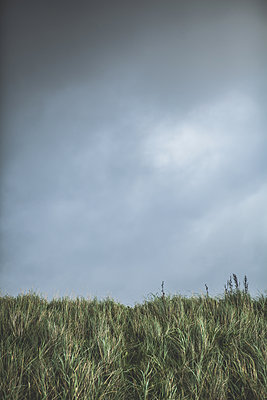 Top of dunes set against a cloudy sky - p1690m2281241 by Marie Carr