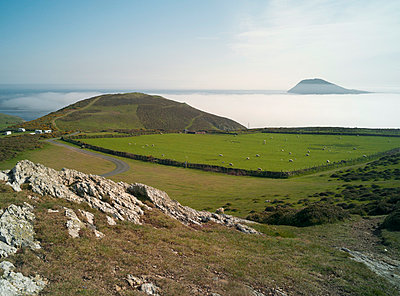 Bardsey Island from Lleyn Peninsula, North Wales - p429m976375 by Planet Pictures