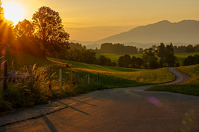 Germany, Bavaria, Allgaeu, East Allgaeu, Swabia, Ammergau Alps and Tannheim Mountains, Ussenburg near Rosshaupten, empty road at sunrise - p300m2059222 by Lisa und Wilfried Bahnmüller