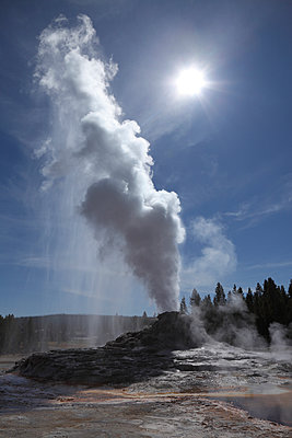 View of Castle Geyser at Yellowstone National Park - p300m878872 by Martin Rietze