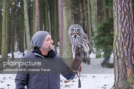 Czechia, Falconer holding great grey owl, Strix nebulosa in forest - p300m1416818 by Andreas Pacek