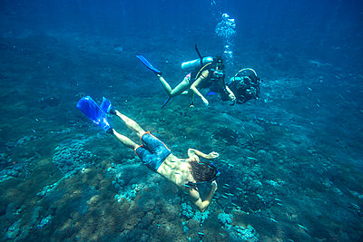 Divers in Indian ocean - p1108m1118848 by trubavin