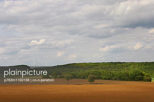 Gepflügtes Feld und Wald mit Wolkenhimmel - p763m1160158 von co-o-peration