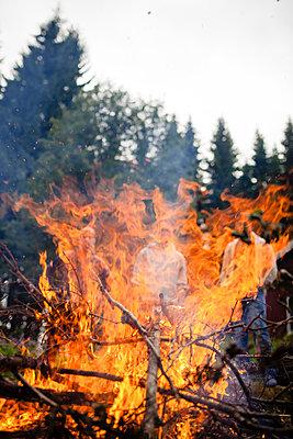Blazing campfire - p1579m2193462 by Alexander Ziegler