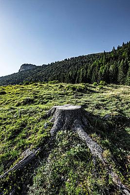 Landscape against blue sky - p1166m1518841 by Cavan Images