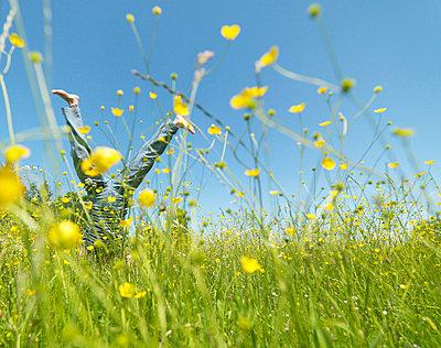 Senior woman cartwheeling through field - p4297476f by Jens Lucking