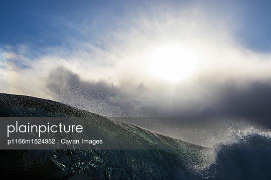 p1166m1524952 von Cavan Images