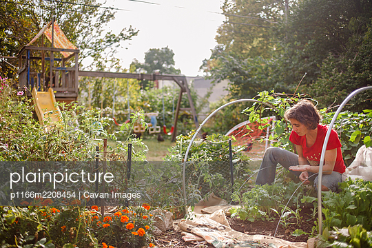 A woman plants seeds in a sunlit backyard urban garden with playset - p1166m2208454 by Cavan Images