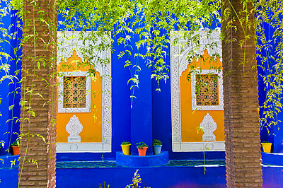 Majorelle Gardens (Gardens of Yves Saint-Laurent), Marrakech, Morocco, North Africa, Africa - p871m807361 by Matthew Williams-Ellis