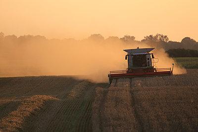 Combine harvester - p1016m924712 by Jochen Knobloch