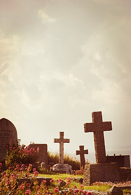 Stone crosses in graveyard - p597m709579 by Tim Robinson