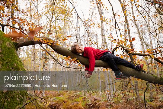 Boy lying on a strong limb - p784m2272950 by Henriette Hermann